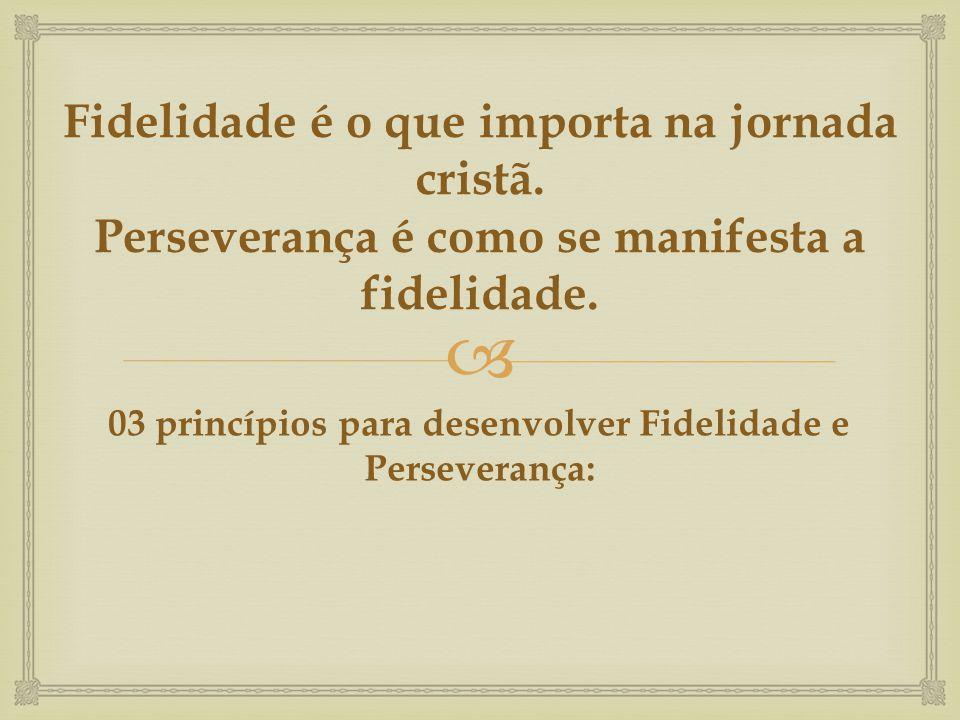 Fidelidade é o que importa na jornada cristã. Perseverança é como se manifesta a fidelidade. 03 princípios para desenvolver Fidelidade e Perseverança: