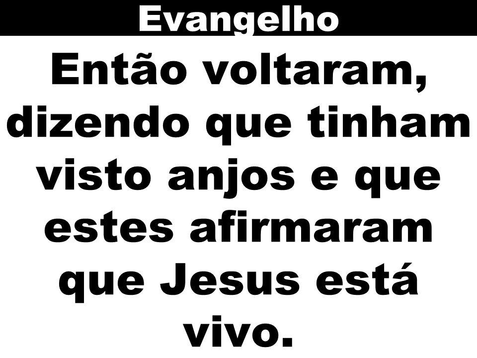 Então voltaram, dizendo que tinham visto anjos e que estes afirmaram que Jesus está vivo. Evangelho