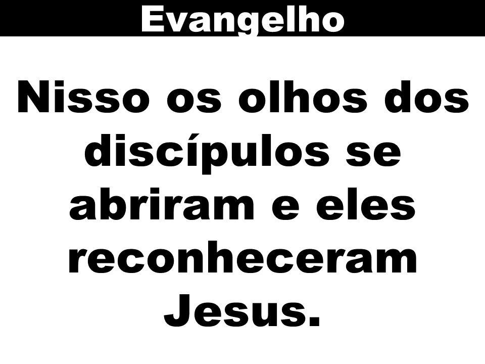 Nisso os olhos dos discípulos se abriram e eles reconheceram Jesus. Evangelho