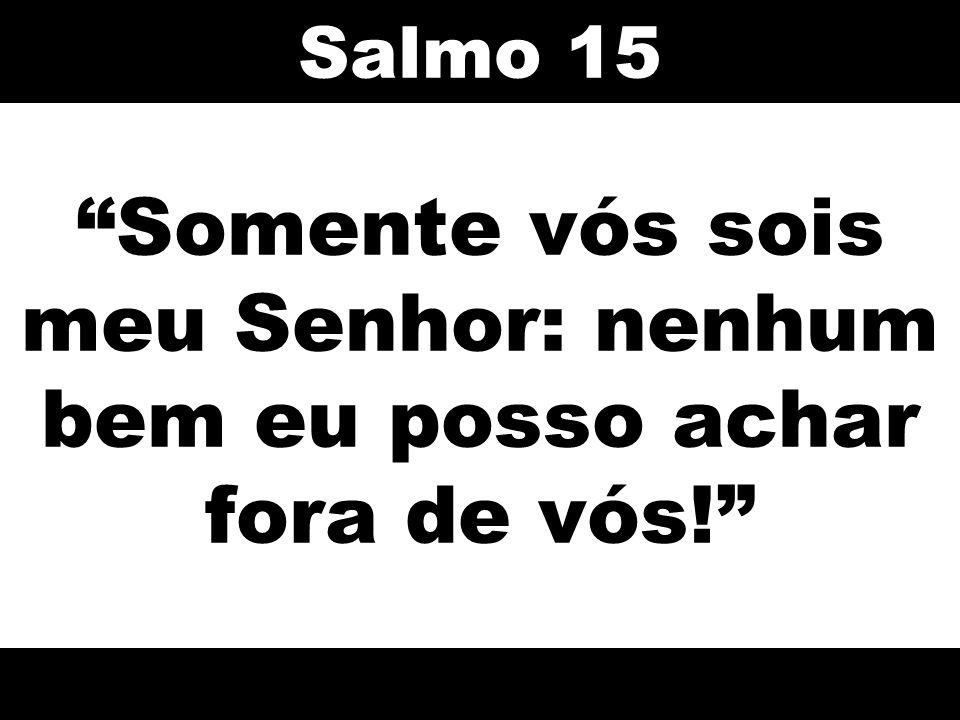 Somente vós sois meu Senhor: nenhum bem eu posso achar fora de vós! Salmo 15