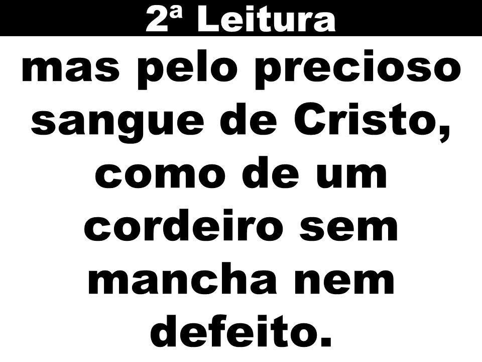 mas pelo precioso sangue de Cristo, como de um cordeiro sem mancha nem defeito. 2ª Leitura