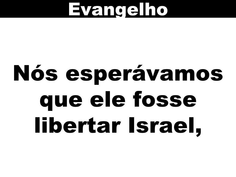 Nós esperávamos que ele fosse libertar Israel, Evangelho