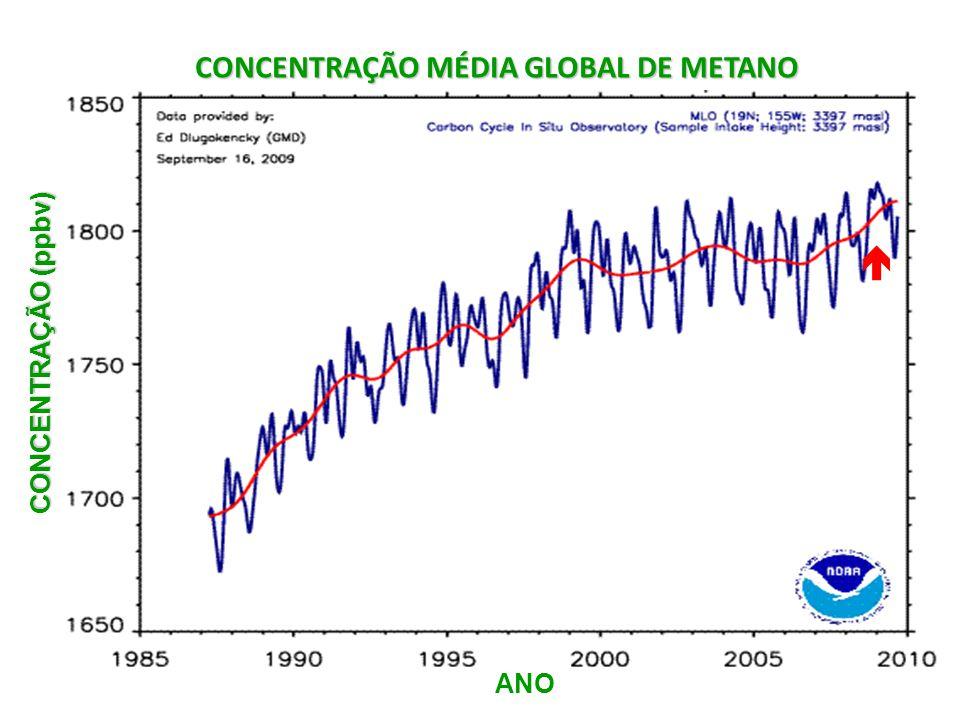 CONCENTRAÇÃO MÉDIA GLOBAL DE METANO CONCENTRAÇÃO (ppbv) ANO