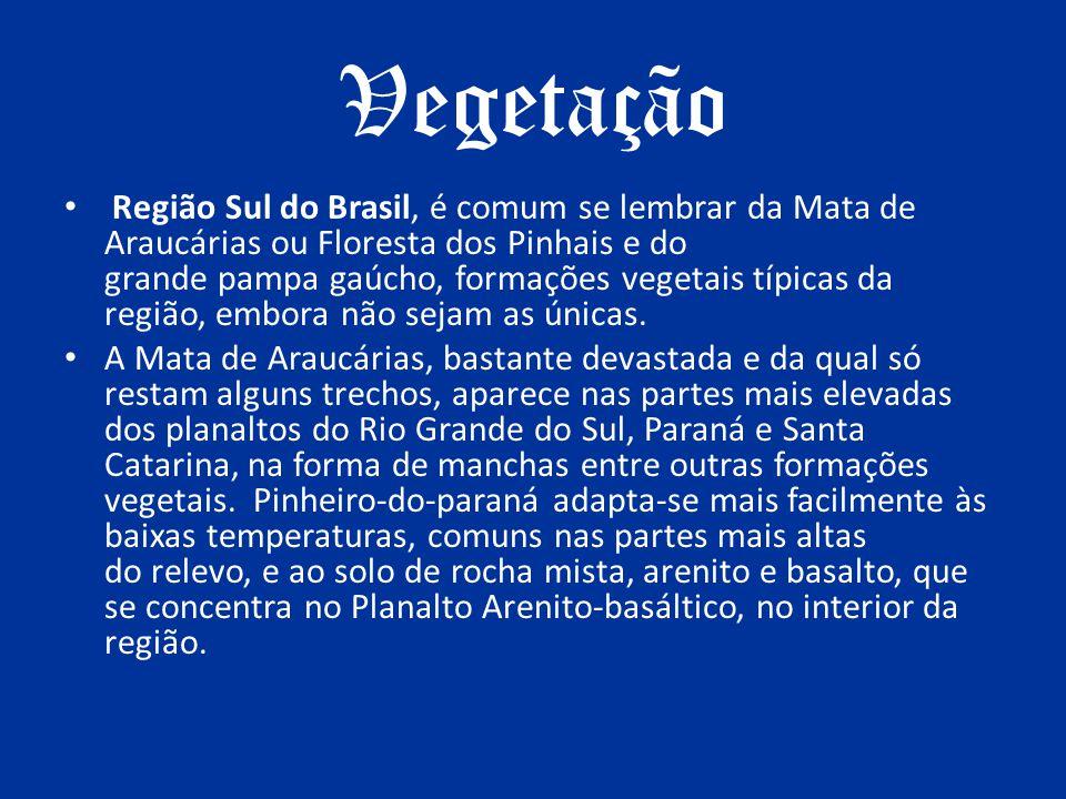 Vegetação Região Sul do Brasil, é comum se lembrar da Mata de Araucárias ou Floresta dos Pinhais e do grande pampa gaúcho, formações vegetais típicas