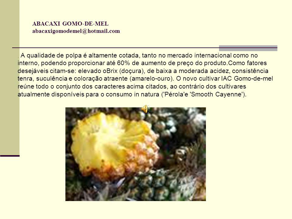 Origem Introduzido da China em 1991, juntamente com outros tipos de material genético, o novo cultivar de abacaxi (IAC Gomo-de-mel ou abacaxi-de-gomo), provavelmente resultante de cruzamento natural, foi incorporado, no mesmo ano, ao banco de germoplasma de abacaxizeiros do Instituto Agronômico, em Campinas.