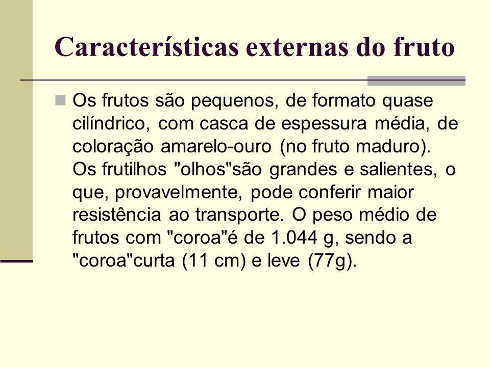 Características externas do fruto Os frutos são pequenos, de formato quase cilíndrico, com casca de espessura média, de coloração amarelo-ouro (no fruto maduro).