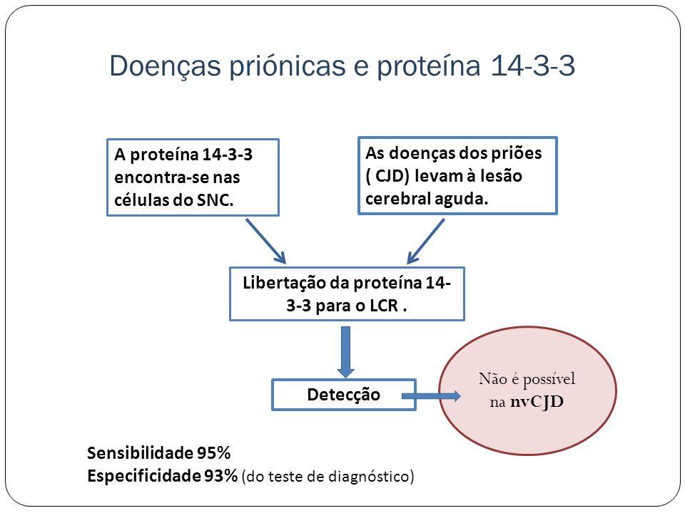 A proteína 14-3-3 encontra-se nas células do SNC.