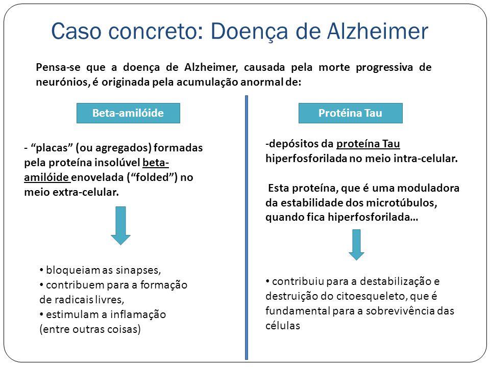 Caso concreto: Doença de Alzheimer Pensa-se que a doença de Alzheimer, causada pela morte progressiva de neurónios, é originada pela acumulação anormal de: Beta-amilóideProtéina Tau - placas (ou agregados) formadas pela proteína insolúvel beta- amilóide enovelada (folded) no meio extra-celular.