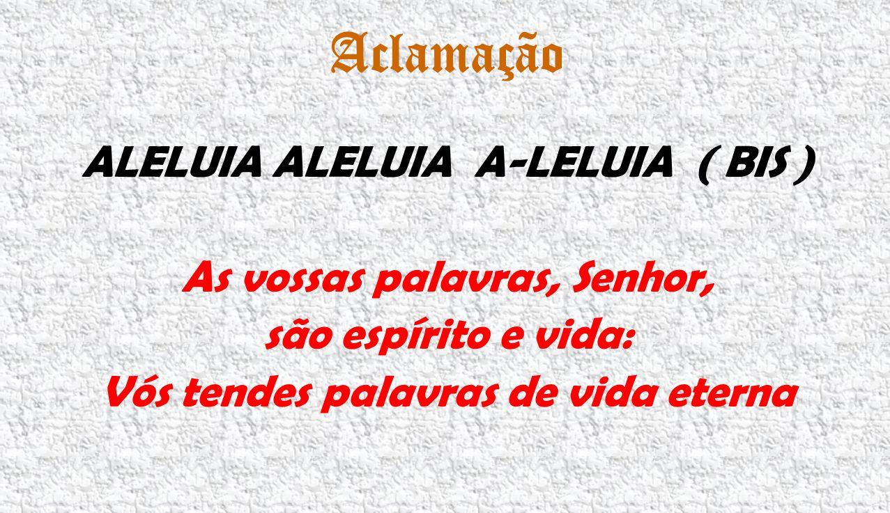 Aclamação ALELUIA ALELUIA A-LELUIA ( BIS ) As vossas palavras, Senhor, são espírito e vida: Vós tendes palavras de vida eterna