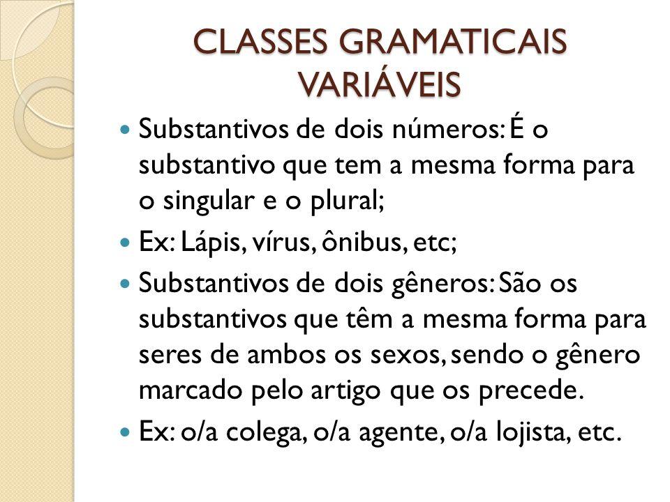 CLASSES GRAMATICAIS VARIÁVEIS Substantivos de dois números: É o substantivo que tem a mesma forma para o singular e o plural; Ex: Lápis, vírus, ônibus