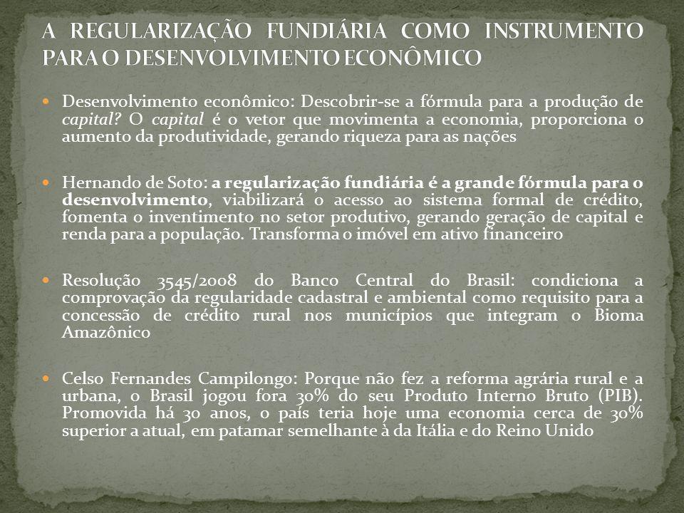 A regularização fundiária está diretamente relacionada ao processo de proteção, preservação e responsabilização ambiental, constituindo necessária etapa precedente para esta Carlos Juliano Barros: O clima de indefinição sobre a propriedade fundiária na região também leva inevitavelmente à devastação da floresta.