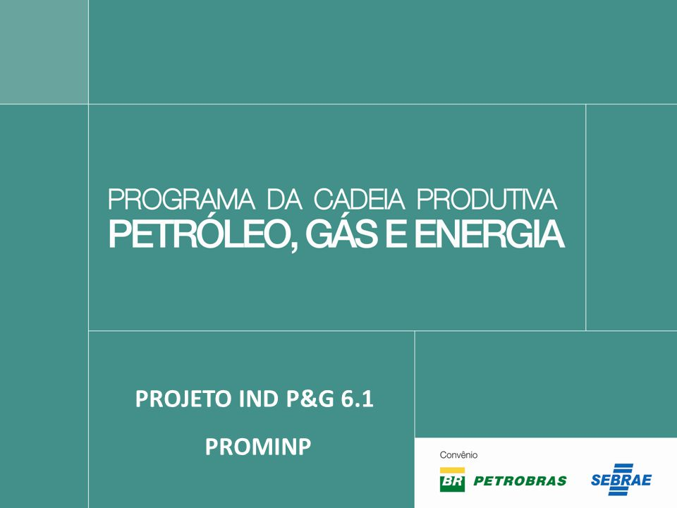 PROJETO IND P&G 6.1 PROMINP