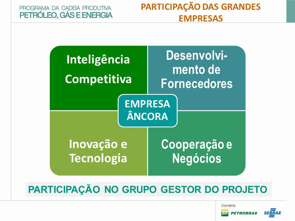 PARTICIPAÇÃO DAS GRANDES EMPRESAS Inteligência Competitiva Desenvolvi- mento de Fornecedores Inovação e Tecnologia Cooperação e Negócios EMPRESA ÂNCORA PARTICIPAÇÃO NO GRUPO GESTOR DO PROJETO