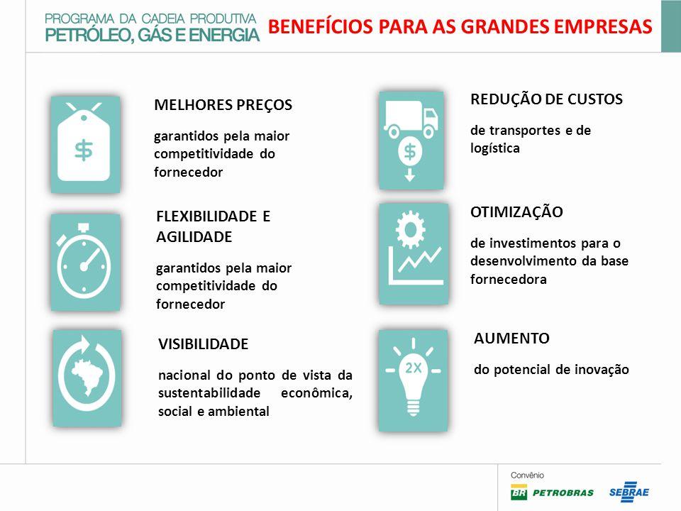 MELHORES PREÇOS garantidos pela maior competitividade do fornecedor FLEXIBILIDADE E AGILIDADE garantidos pela maior competitividade do fornecedor VISIBILIDADE nacional do ponto de vista da sustentabilidade econômica, social e ambiental REDUÇÃO DE CUSTOS de transportes e de logística OTIMIZAÇÃO de investimentos para o desenvolvimento da base fornecedora AUMENTO do potencial de inovação BENEFÍCIOS PARA AS GRANDES EMPRESAS