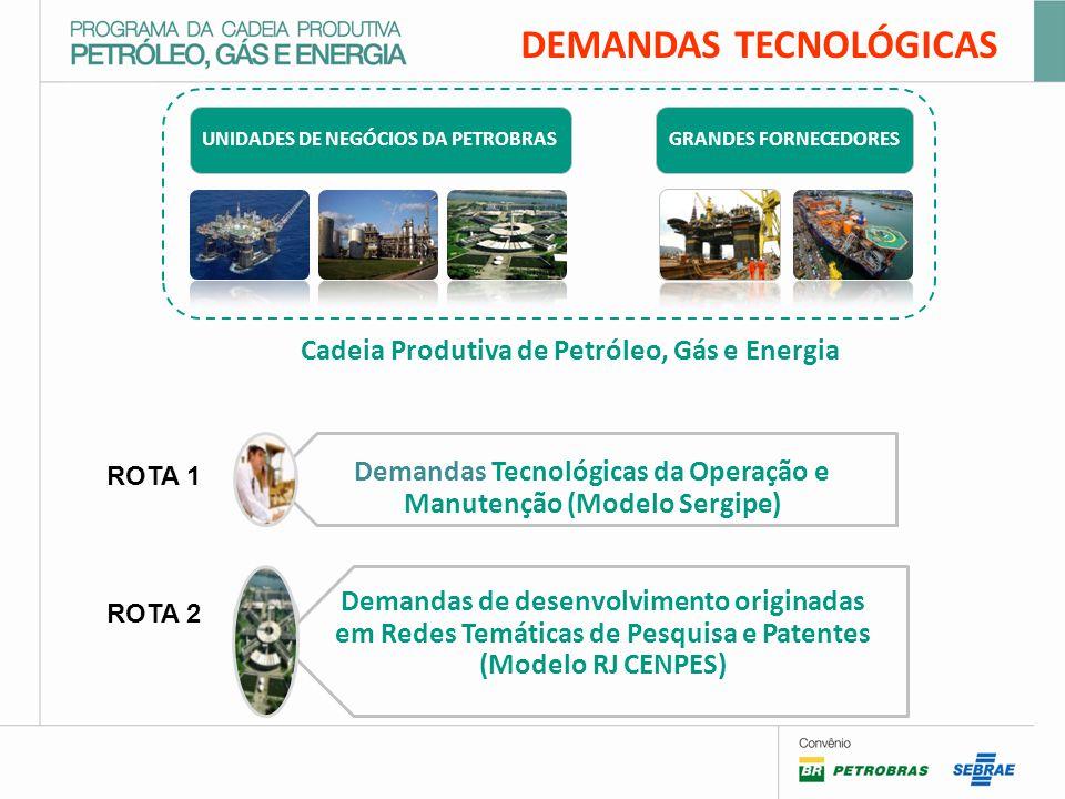 UNIDADES DE NEGÓCIOS DA PETROBRASGRANDES FORNECEDORES Cadeia Produtiva de Petróleo, Gás e Energia Demandas Tecnológicas da Operação e Manutenção (Modelo Sergipe) Demandas de desenvolvimento originadas em Redes Temáticas de Pesquisa e Patentes (Modelo RJ CENPES) DEMANDAS TECNOLÓGICAS ROTA 1 ROTA 2