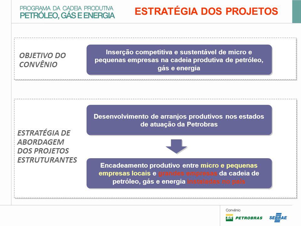 OBJETIVO DO CONVÊNIO ESTRATÉGIA DOS PROJETOS Inserção competitiva e sustentável de micro e pequenas empresas na cadeia produtiva de petróleo, gás e energia ESTRATÉGIA DE ABORDAGEM DOS PROJETOS ESTRUTURANTES Desenvolvimento de arranjos produtivos nos estados de atuação da Petrobras Encadeamento produtivo entre micro e pequenas empresas locais e grandes empresas da cadeia de petróleo, gás e energia instaladas no país