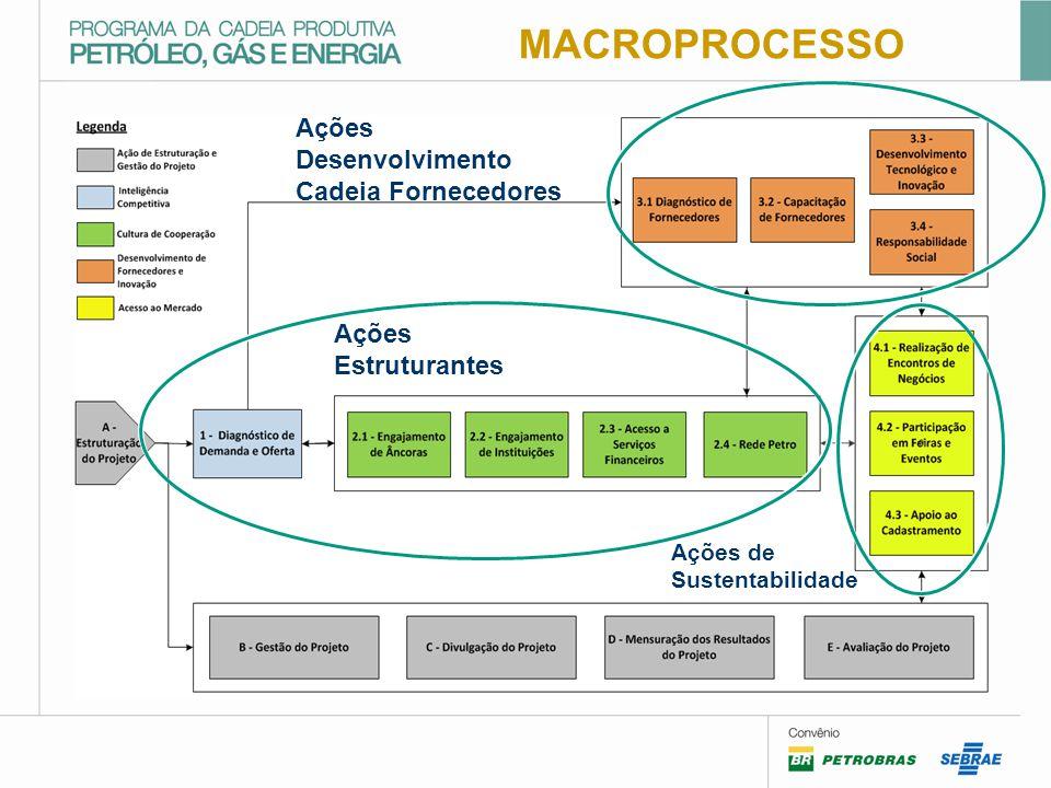 MACROPROCESSO Ações Desenvolvimento Cadeia Fornecedores Ações Estruturantes Ações de Sustentabilidade