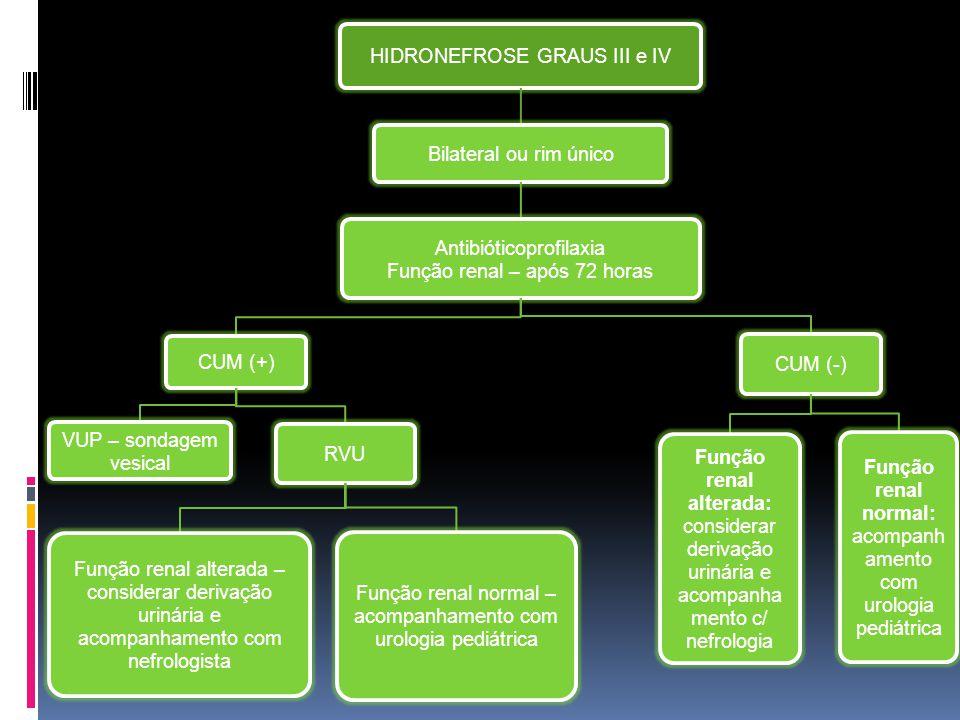HIDRONEFROSE GRAUS III e IV Bilateral ou rim único Antibióticoprofilaxia Função renal – após 72 horas CUM (+) VUP – sondagem vesical RVU Função renal