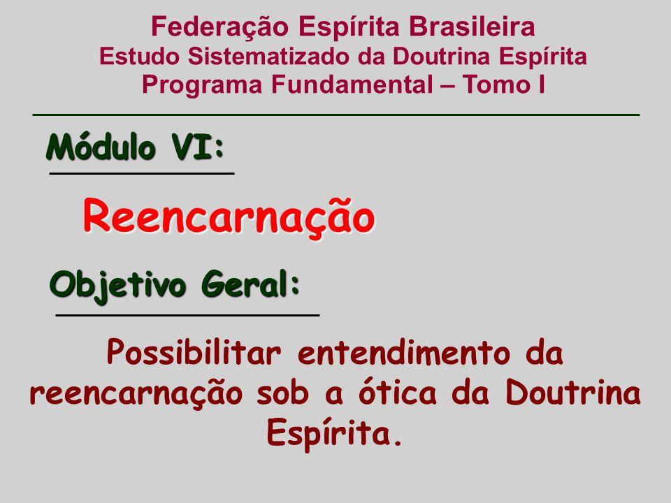 Federação Espírita Brasileira Estudo Sistematizado da Doutrina Espírita Programa Fundamental – Tomo I Reencarnação Possibilitar entendimento da reencarnação sob a ótica da Doutrina Espírita.