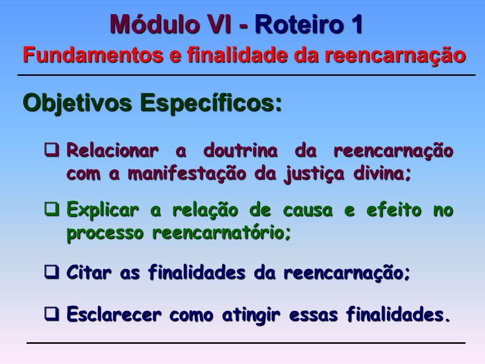 Explicar a relação de causa e efeito no processo reencarnatório; Explicar a relação de causa e efeito no processo reencarnatório; Objetivos Específicos: Citar as finalidades da reencarnação; Citar as finalidades da reencarnação; Relacionar a doutrina da reencarnação com a manifestação da justiça divina; Relacionar a doutrina da reencarnação com a manifestação da justiça divina; Esclarecer como atingir essas finalidades.