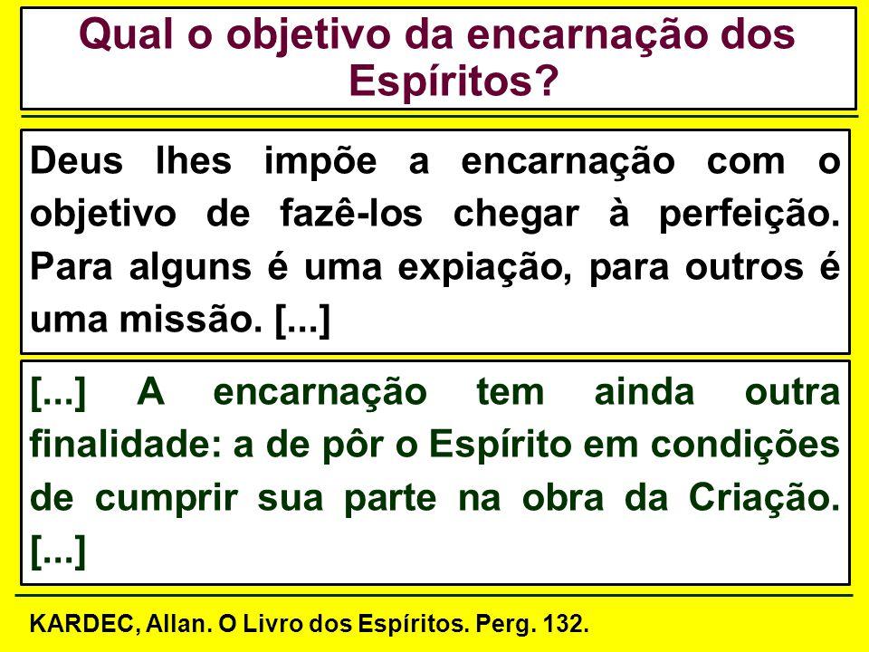 Explicar a relação de causa e efeito no processo reencarnatório; Explicar a relação de causa e efeito no processo reencarnatório; Objetivos Específico