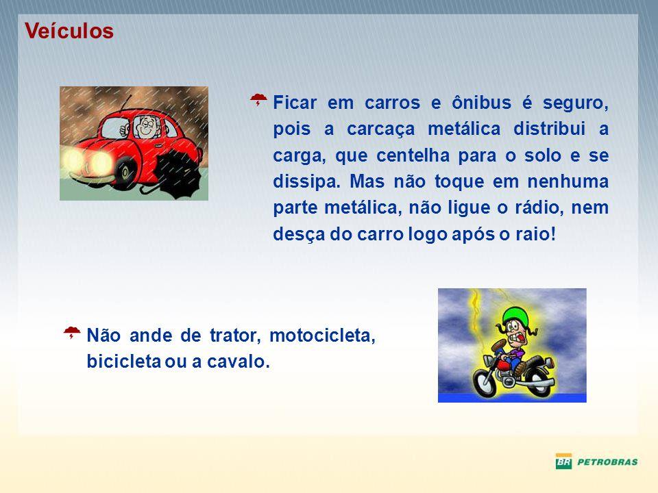 Ficar em carros e ônibus é seguro, pois a carcaça metálica distribui a carga, que centelha para o solo e se dissipa. Mas não toque em nenhuma parte me