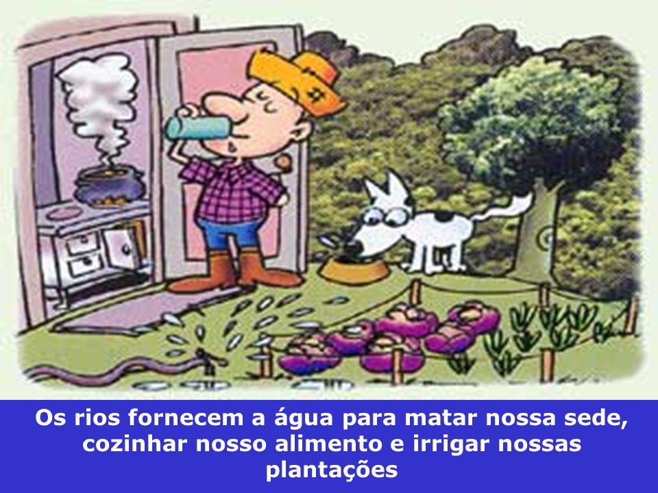 Disponível em: www.sergiomoraes-biologia.webnode.pt