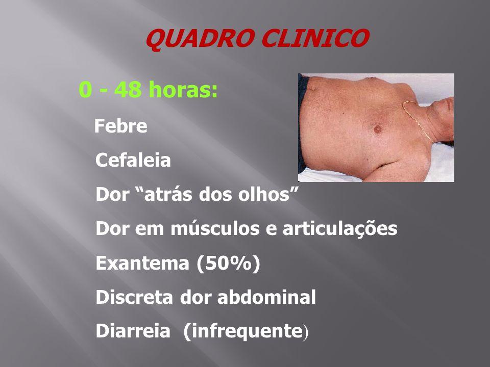 QUADRO CLINICO 0 - 48 horas: Febre Cefaleia Dor atrás dos olhos Dor em músculos e articulações Exantema (50%) Discreta dor abdominal Diarreia (infrequente )