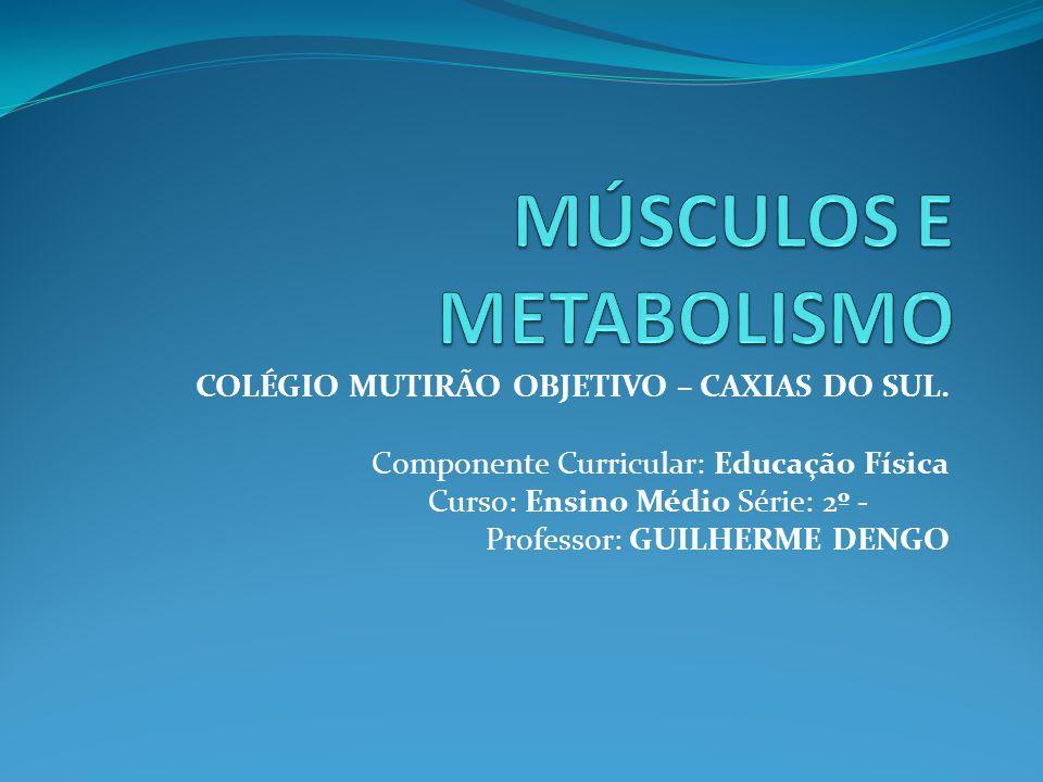 COLÉGIO MUTIRÃO OBJETIVO – CAXIAS DO SUL. Componente Curricular: Educação Física Curso: Ensino Médio Série: 2º - Professor: GUILHERME DENGO