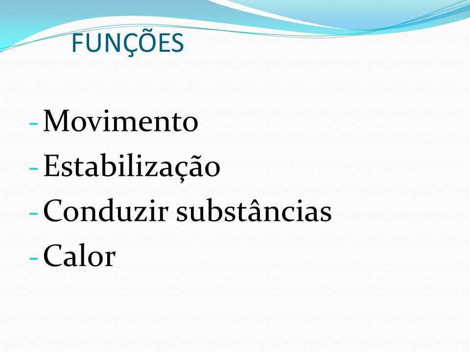 FUNÇÕES - Movimento - Estabilização - Conduzir substâncias - Calor