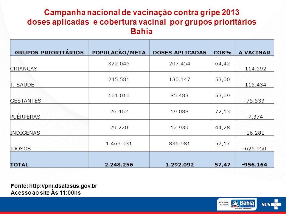 Fonte:http://pni.datasus.gov.br Dados parciais até 03/05/2013
