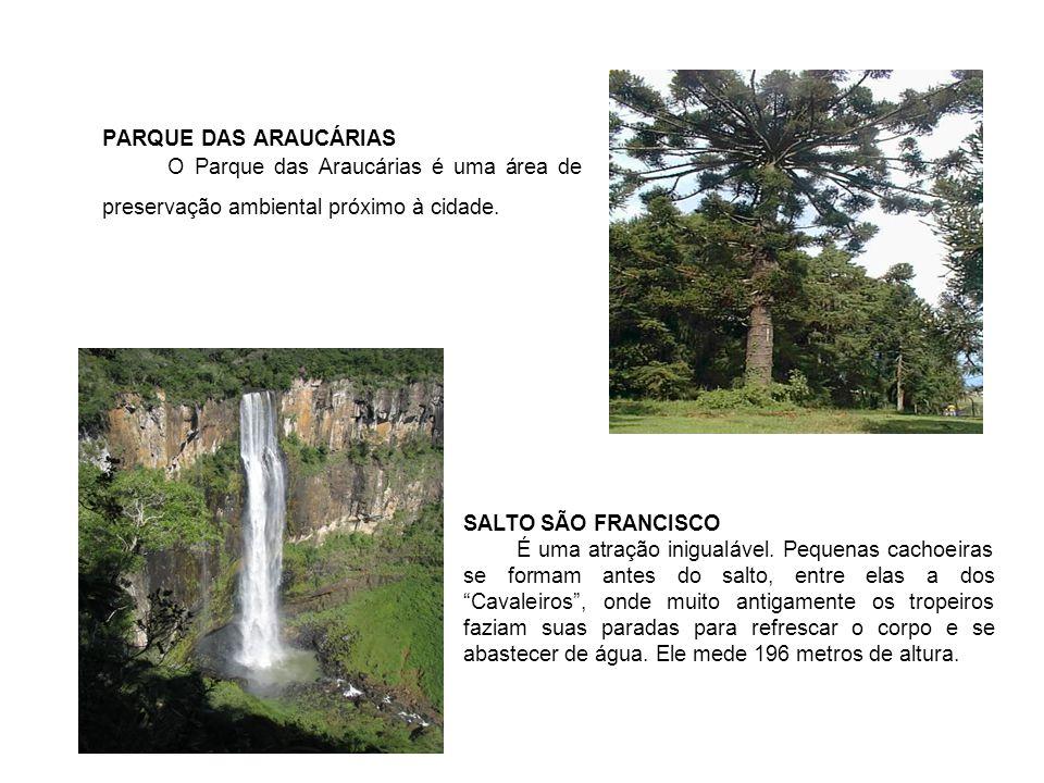 PARQUE DAS ARAUCÁRIAS O Parque das Araucárias é uma área de preservação ambiental próximo à cidade. SALTO SÃO FRANCISCO É uma atração inigualável. Peq