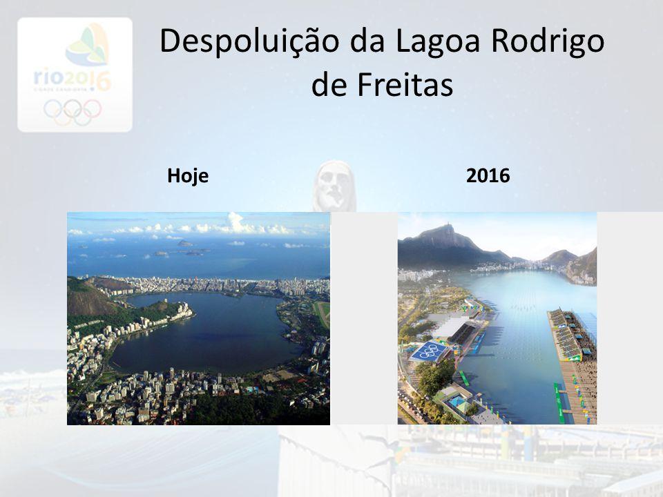 Despoluição da Lagoa Rodrigo de Freitas Hoje2016