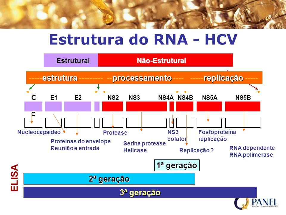 Estrutura do RNA - HCV C Estrutura EstruturalNão-Estrutural estruturaprocessamentoreplicação -----estrutura --------- --processamento ---- -----replic