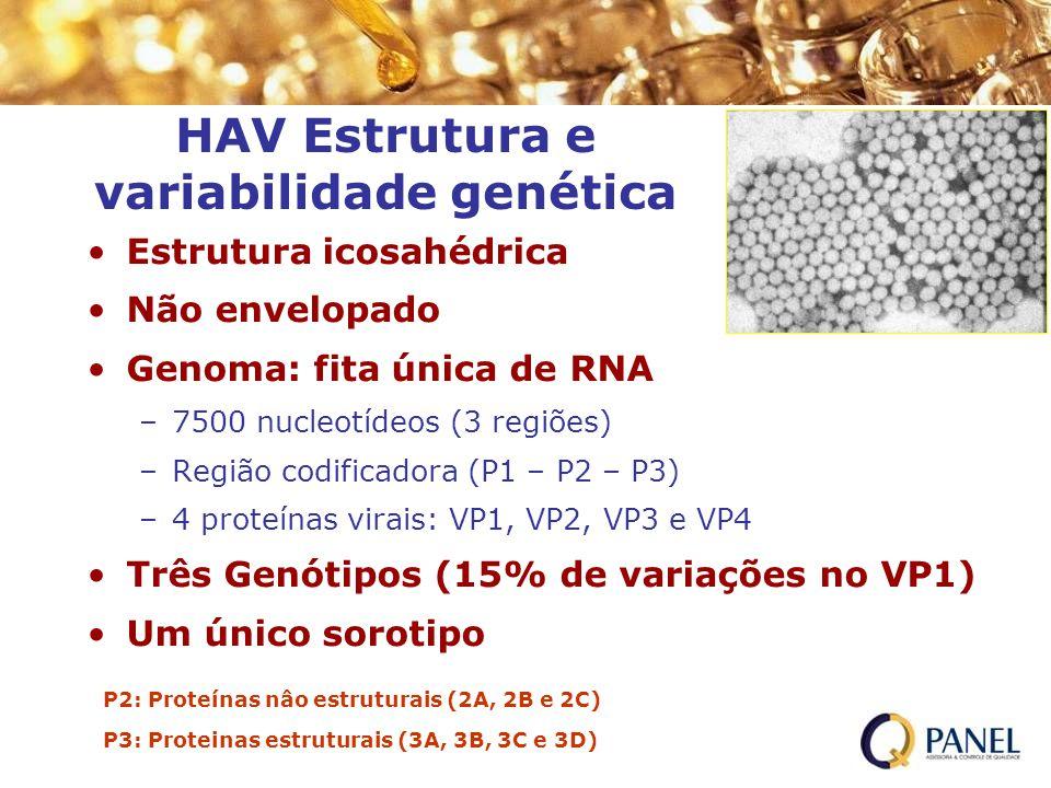 Estrutura icosahédrica Não envelopado Genoma: fita única de RNA –7500 nucleotídeos (3 regiões) –Região codificadora (P1 – P2 – P3) –4 proteínas virais