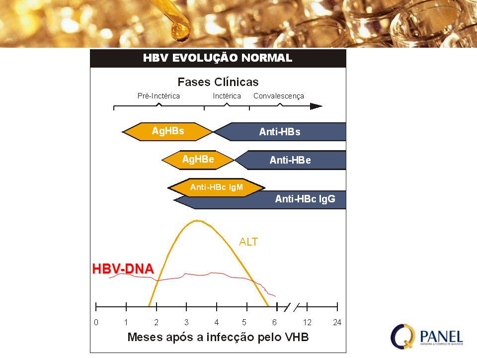 HBV-DNA