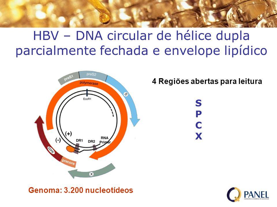 HBV – DNA circular de hélice dupla parcialmente fechada e envelope lipídico Genoma: 3.200 nucleotídeos 4 Regiões abertas para leitura SPCXSPCX