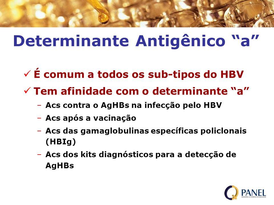 Determinante Antigênico a É comum a todos os sub-tipos do HBV Tem afinidade com o determinante a –Acs contra o AgHBs na infecção pelo HBV –Acs após a