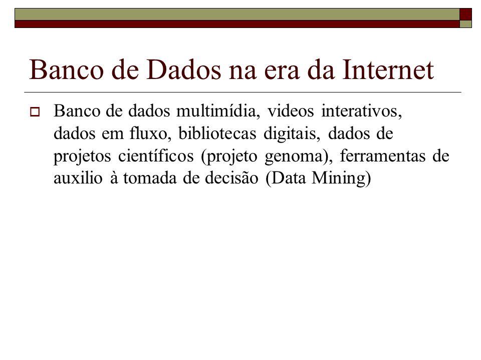 Banco de Dados na era da Internet Banco de dados multimídia, videos interativos, dados em fluxo, bibliotecas digitais, dados de projetos científicos (projeto genoma), ferramentas de auxilio à tomada de decisão (Data Mining)