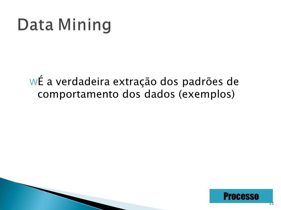 22 W É a verdadeira extração dos padrões de comportamento dos dados (exemplos) Processo