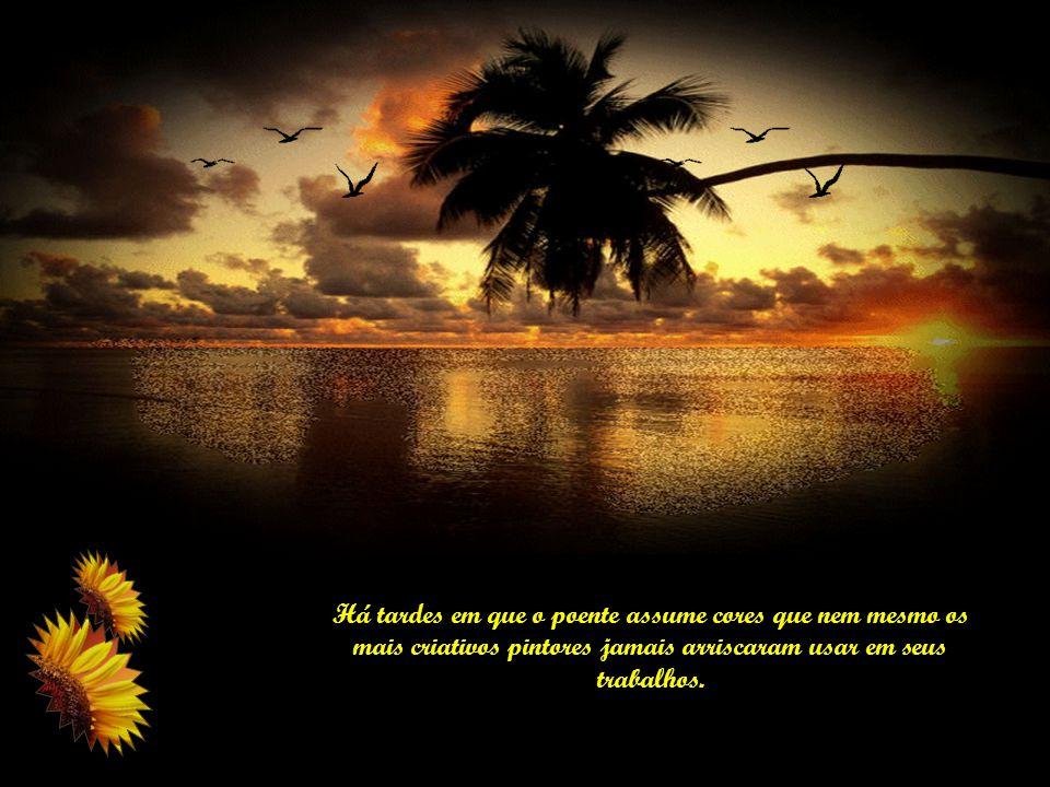 As verdadeiras riquezas não são consumíveis pelo tempo, nem podem ser corroídas pela inveja alheia.