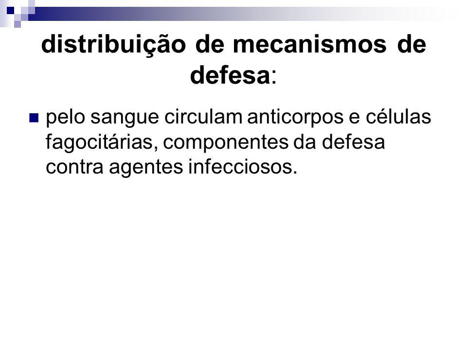 distribuição de mecanismos de defesa: pelo sangue circulam anticorpos e células fagocitárias, componentes da defesa contra agentes infecciosos.