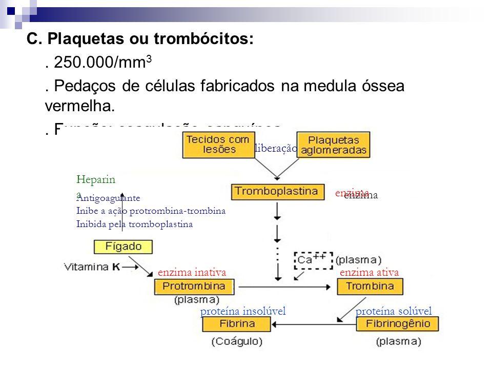 C. Plaquetas ou trombócitos:. 250.000/mm 3. Pedaços de células fabricados na medula óssea vermelha.. Função: coagulação sanguínea. enzima enzima inati