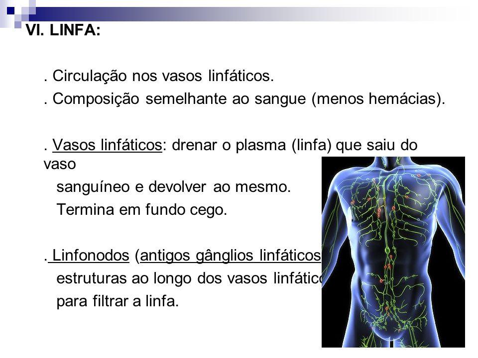 VI. LINFA:. Circulação nos vasos linfáticos.. Composição semelhante ao sangue (menos hemácias).. Vasos linfáticos: drenar o plasma (linfa) que saiu do