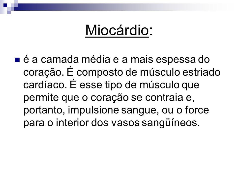 Miocárdio: é a camada média e a mais espessa do coração. É composto de músculo estriado cardíaco. É esse tipo de músculo que permite que o coração se