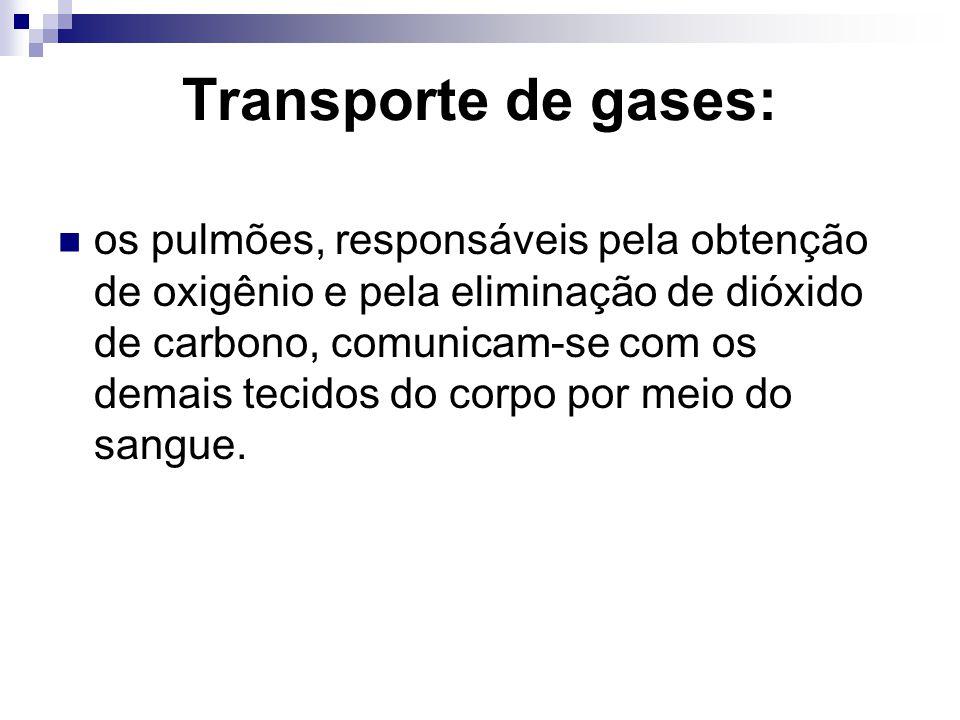 Transporte de gases: os pulmões, responsáveis pela obtenção de oxigênio e pela eliminação de dióxido de carbono, comunicam-se com os demais tecidos do