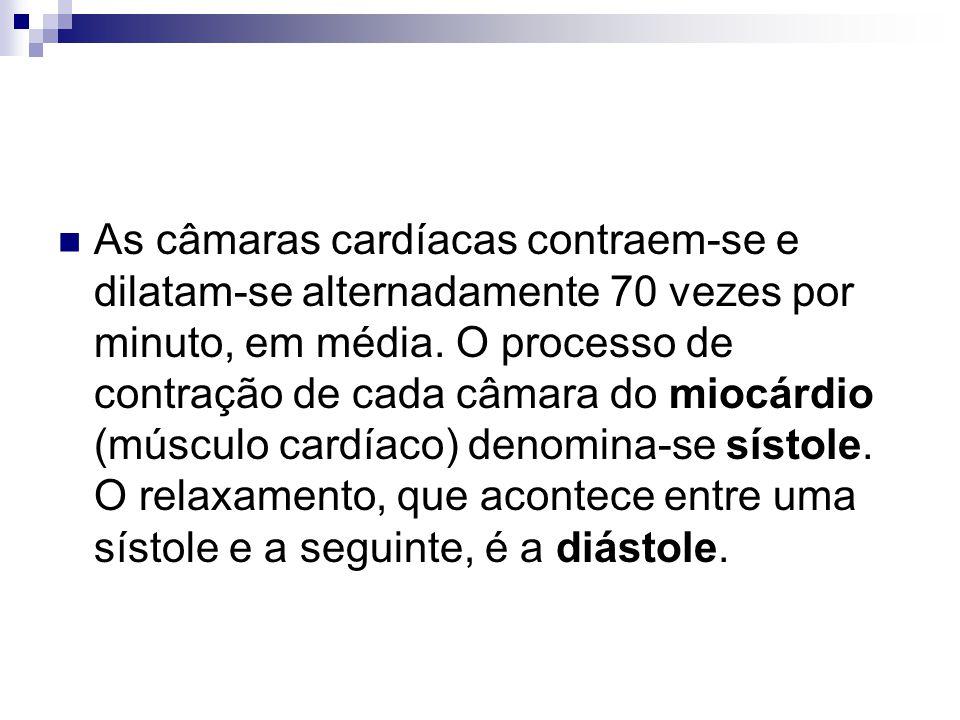 As câmaras cardíacas contraem-se e dilatam-se alternadamente 70 vezes por minuto, em média. O processo de contração de cada câmara do miocárdio (múscu