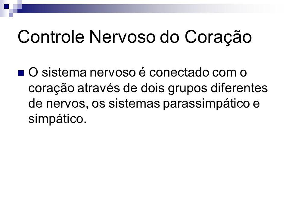 Controle Nervoso do Coração O sistema nervoso é conectado com o coração através de dois grupos diferentes de nervos, os sistemas parassimpático e simp