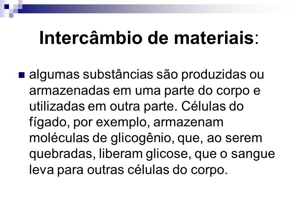 Intercâmbio de materiais: algumas substâncias são produzidas ou armazenadas em uma parte do corpo e utilizadas em outra parte. Células do fígado, por
