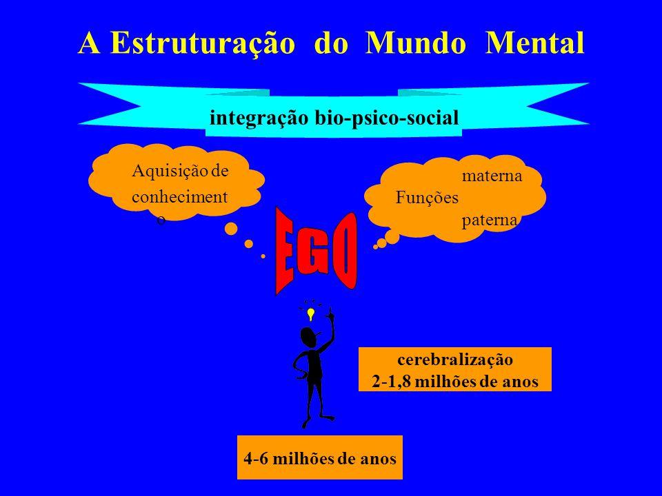 A Estruturação do Mundo Mental 4-6 milhões de anos cerebralização 2-1,8 milhões de anos materna Funções paterna integração bio-psico-social Aquisição